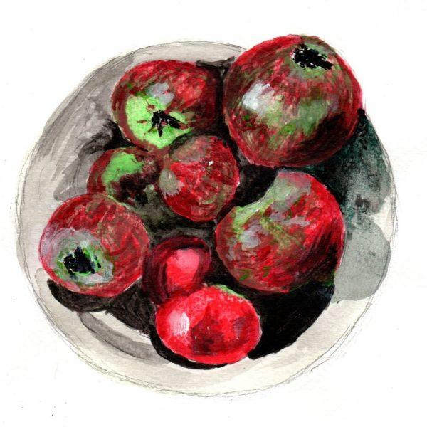 Manzanas. 14x19cm.