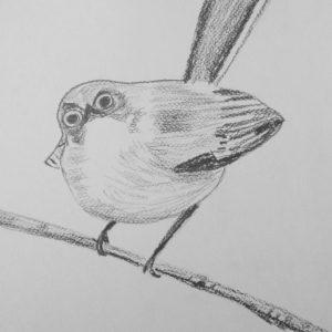 24. Pájaro sorprendido. 40x30 cm. 65 e.