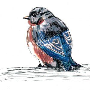 Pájaro de poesía. 20,5x16,5cm.